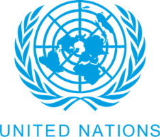 United Nations client logo